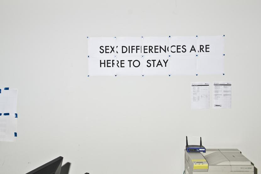 In what is probably an office space or design studio (you can make out a laser printer, the back of a flatscreen monitor) a text is tacked to the wall constructed of a number of A4 sheets collated together: SEX DIFFERENCES ARE HERE TO STAY